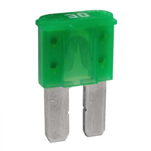 30 Amp Micro-2 style blade fuse ( Green)